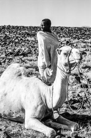 Gabbra Nomad