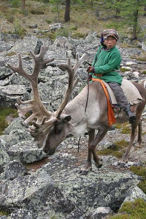 Young Dukha girl, named BIGUN, herding reindeer. Will the young generation of Tsaatan make the same choices their ancestors made to stay in the wilderness. Northern Mongolia