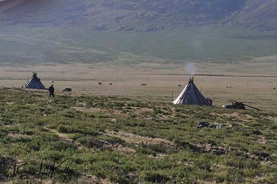 Conicle shaped teepee encampments called ail of Tsaatan. Northern Mongolia