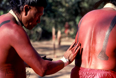 Lean brown bodies glisten with red and black paint as Xavante men assist one another preparing for an initiation ceremony.