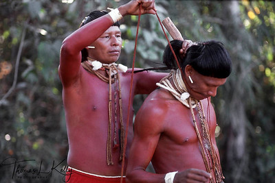 Xavante men assist one another preparing hair for a an initiation.