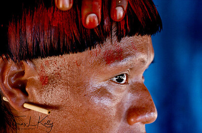 Painted hair of Xavante man. Xavante men assist one another painting face for a an initiation