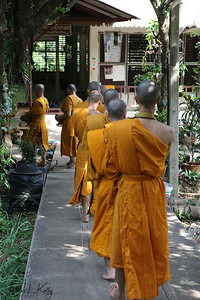 Monks at Tham Tong Meditation Center. It is located 86 km southwest of Chiang Mai. The meditation here is Vipassana based on methods taught by Mahasi Sayadaw. The centre is a branch of Wat Maha That in Bangkok. Thailand.