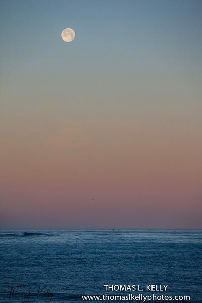 La Jolla Beach, California.