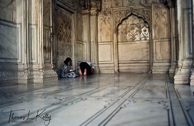 In laid precious stone work, Taj Mahal. Agra, India.