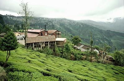 Over view of Happy Land, Darjeeling, India