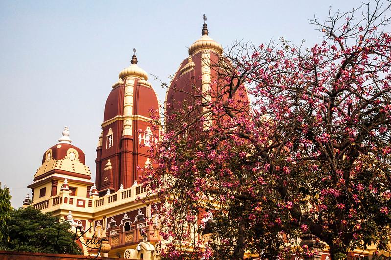 Shri Laxmi Narain Temple.