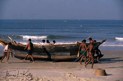 An important part of the local economy revolves around fishing. Among the many ethnic groups of Goa are the Kharvis, one of the truly indigenous tribes of the region. Goa, India.