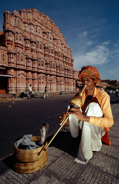 Snake charmer infront of Pink Palace. Jaipur, India.