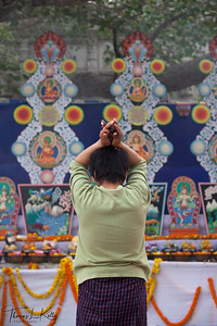 Bhutanese pilgrim praying at butter statues that is made under the Bodhi tree inside Mahabodhi Temple complex. Kalachakra Initiation in Bodhgaya, India. (Jan-2012)