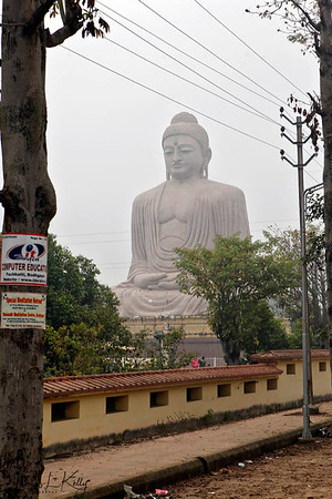 Buddha in Bodhgaya, India. (Jan-2012)