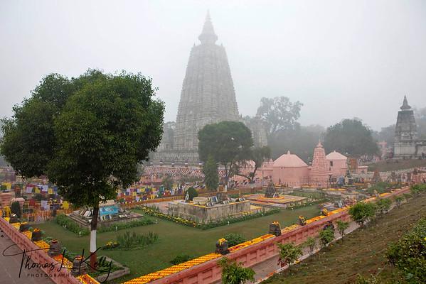 Maha Bodhi temple complex. Bodhgaya, Bihar, India. (Jan-2012)