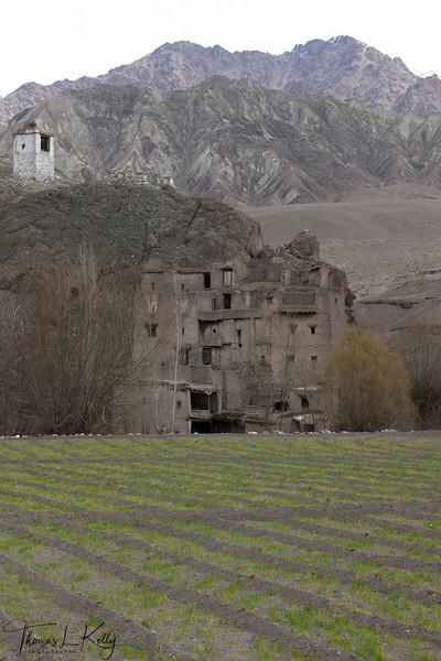 Alchi village house