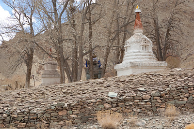 Chortens on the way to Hemis Monastery.