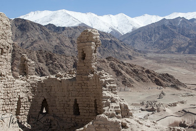 Shey Palace in Ladakh, India.