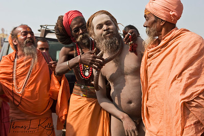 Sadhus in thousands come to Allahabad to attend Kumbha Mela. India.