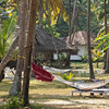 Marari Beach Resort : The cottages in Marari beach resort is separated by generous stretches of open parkland, dotted with fruit-laden trees. The winding village pathways are a faithful echo of the originals. Rambling walls curve around corners, their rust-coloured stones smothered with trumpet flowers. Completing the picture are rippling lotus ponds, usually with a family of ducklings getting a swimming lesson out in the middle. 