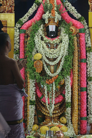 Stone idol of Lord Balaji/Venkateshwor.