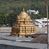 Tirupati : Tirupati: At the feet of Lord Balaji.