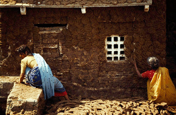 Varanasi women drying cow dung, which is used as fuel. Varanasi, India.