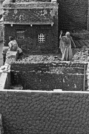 Village women making Guithas (cow dung cake). This is used as a fuel along with coal for cooking.  Varanasi, India.