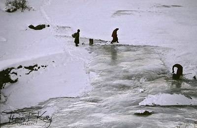 Zanskar porters survey river. Zanskar, India.