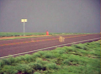 Looking West From Texas Farm Road 809 And Texas Farm Road 22 Northeast Of Hereford, Texas At A Killer Tumble Weed
