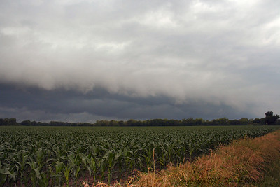 Looking West-Southwest From West 530th Ave. And South 180th Street Southwest Of Pittsburg, Kansas At A Gust Front.
