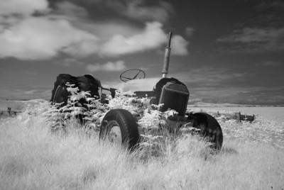 Old Tractor in Bracken, Isle of Islay, Scotland. 2011