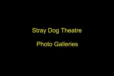 STRAY DOG THEATRE