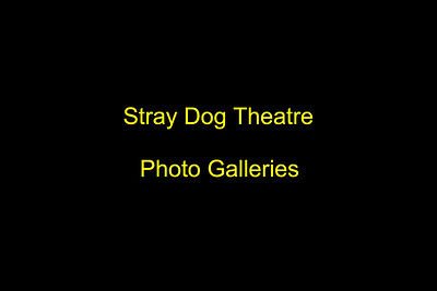 STRAY DOG THEATRE