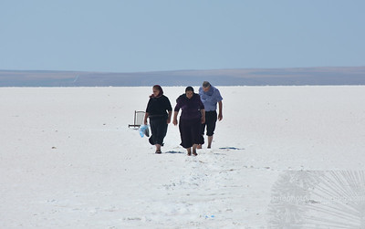 Salt lake 2015
