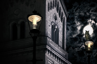 No Fear | Owl in front of Moonlit Church at Night