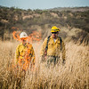 Arivaca Fire Prescribed Burn-1272