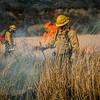 Arivaca Fire Prescribed Burn-1455