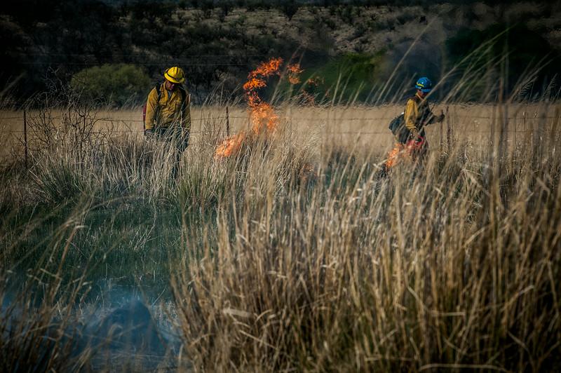 Arivaca Fire Prescribed Burn-1423