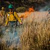 Arivaca Fire Prescribed Burn-1446