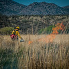 Arivaca Fire Prescribed Burn-1396