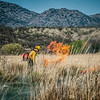 Arivaca Fire Prescribed Burn-1385