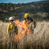 Arivaca Fire Prescribed Burn-1260