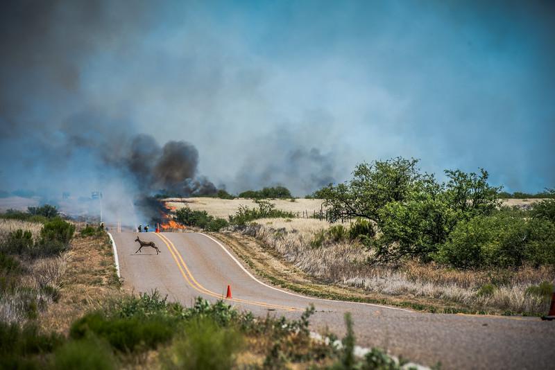 Buenas Aries Burn 2016 1120