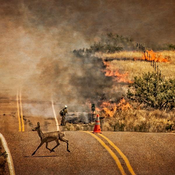Buenas Aries Burn 2016 1106-Edit