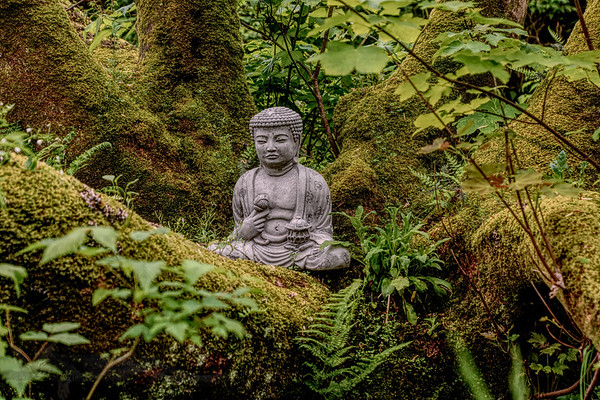 Sculpture - Buddha in the Garden