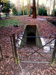 Osterley Park  Ice Well