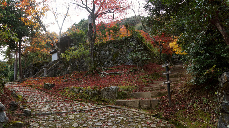 Kyoto - Footpath near Takiguchi-dera Temple