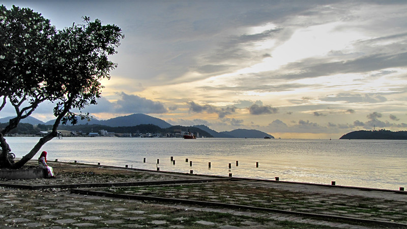 Woman Sitting Under a Tree - Lumut
