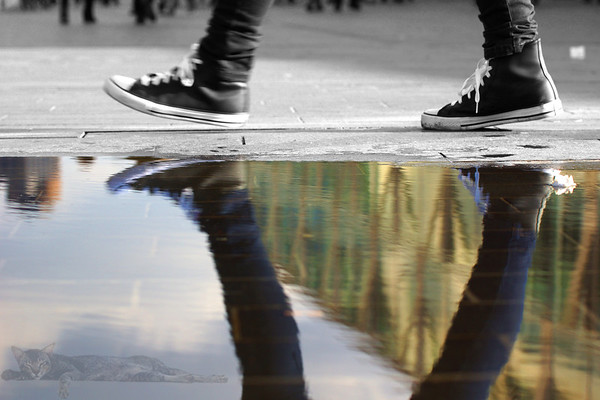 Walking Puddle Reflections - London