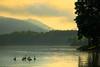 TN HAMPTON APP TRAIL WATAUGA LAKE SHOOK BRANCH RECREATION AREA JUNEAB_MG_4828cMM