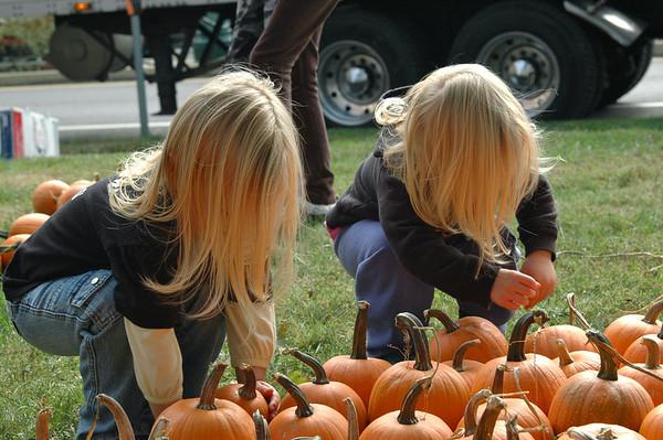Pumpkin Patch 2010
