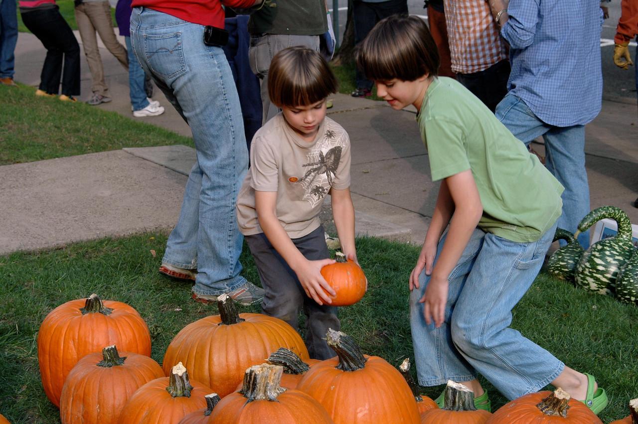 Pumpkin Placement - 3